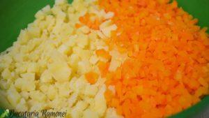 Salata-Boeuf-b