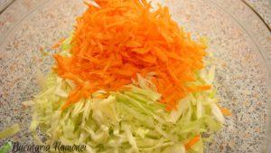 salata-de-varza-si-morcovi-cu-sos-de-iaurt-b