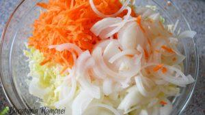 salata-de-varza-morcovi-si-ceapa-cu-sos-de-iaurt-a