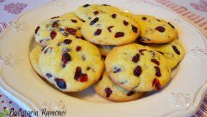 Cookies-cu-merisoare-i