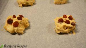 Cookies-cu-stafide-si-scortisoara-e