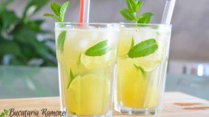 Mojito-Cocktail-i