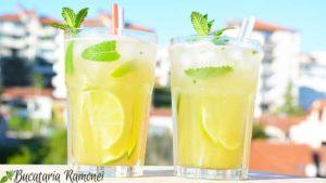 Mojito-Cocktail-l