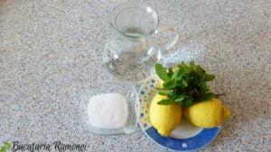 Limonada-cu-menta-a