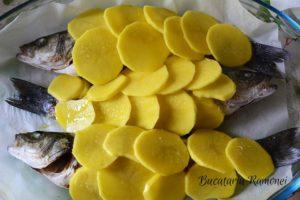 salau-de-mare-in-crusta-de-cartofi-d