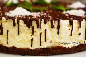 Cheesecake-cu-nuca-de-cocos-si-ciocolata-n
