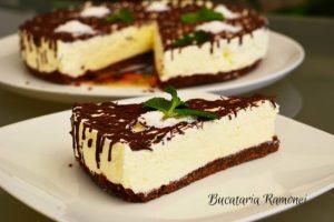 Cheesecake cu nuca de cocos si ciocolata