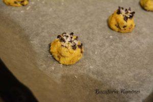 Cookies-cu-nuca-de-cocos-si-ciocolata-g
