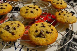 Cookies-cu-nuca-de-cocos-si-ciocolata-h