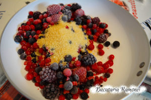 Tort cu iaurt si fructe de padure