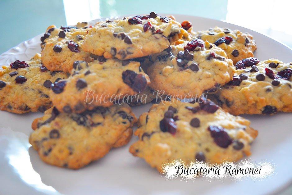 Cookies cu fulgi de ovaz, ciocolata si merisoare